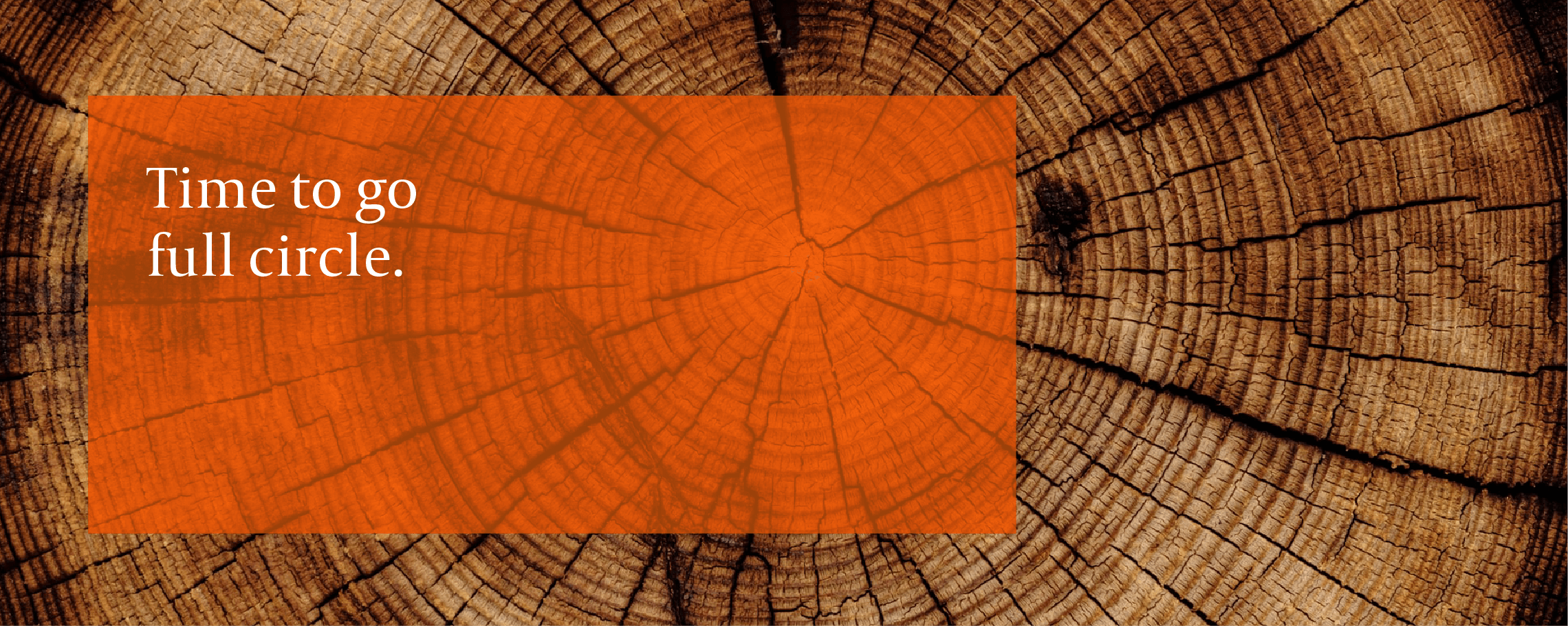 "Cross-cut of a tree trunk with age rings exposed - with ""Time to go full circle"""